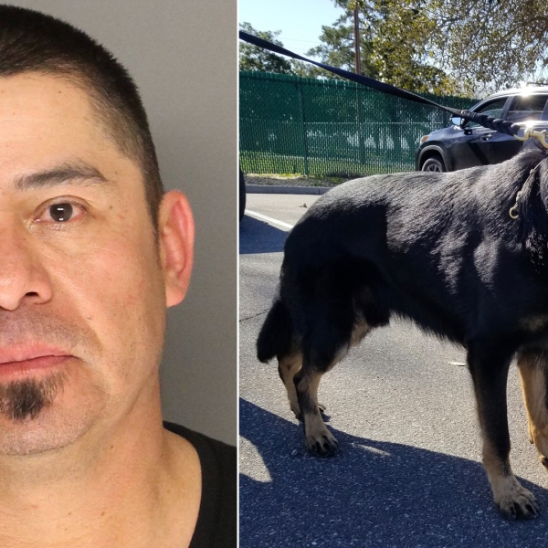 Carlos Medina, left, is seen in a booking photo provided by the Santa Barbara County Sheriff's Office on Feb. 11, 2019. Sheriff's K-9 Odin is seen on the right.
