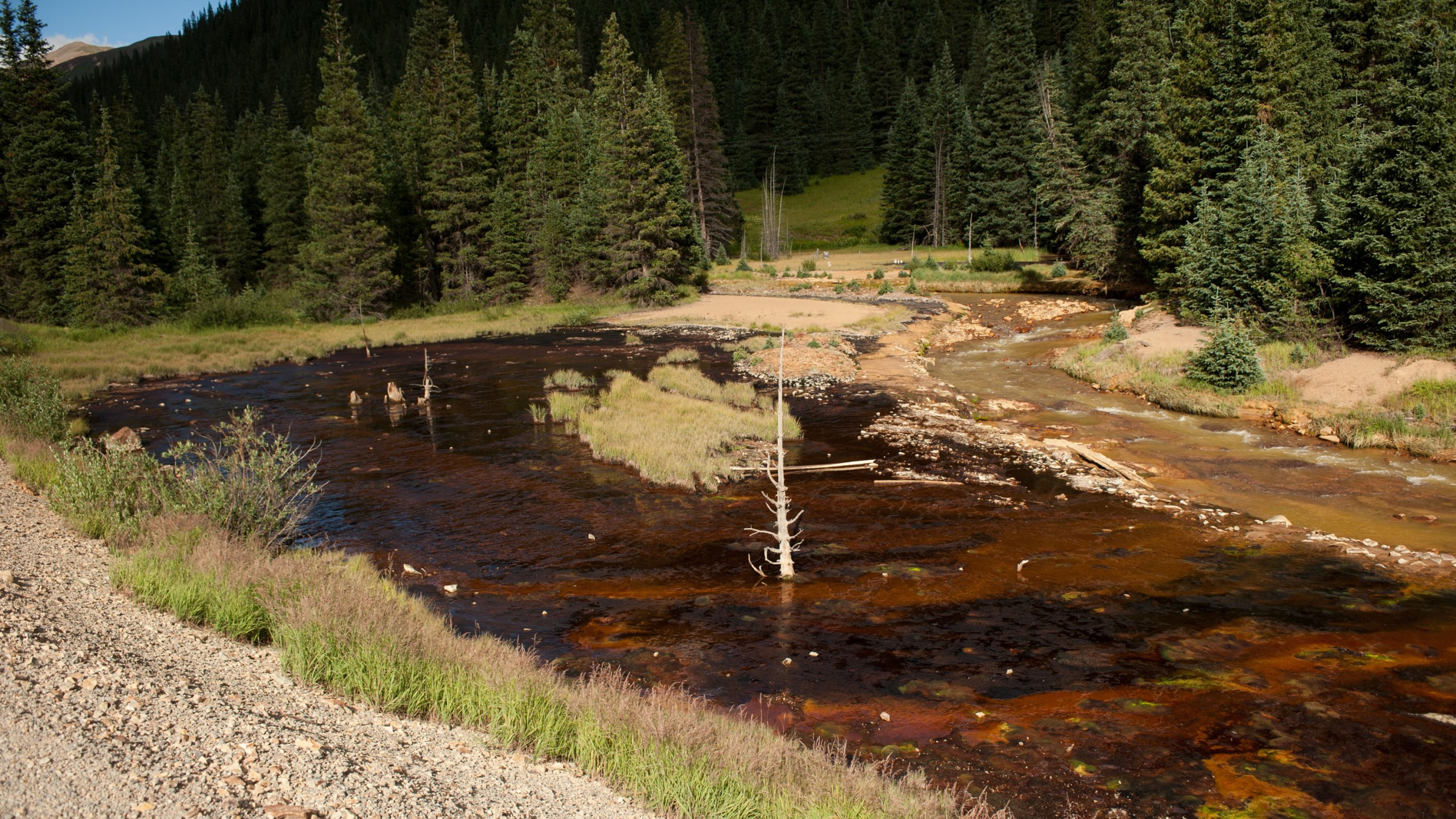 Cement Creek, which was flooded with millions of gallons of mining wastewater, is viewed on August 11, 2015 in Silverton, Colorado. (Credit: Theo Stroomer/Getty Images)