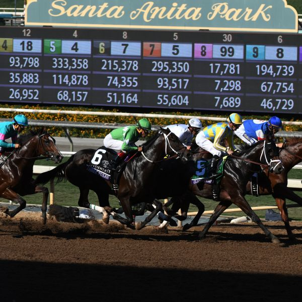 Horses dash at the start of the Sentient Jet Breeders' Cup Juvenile race during the 2016 Breeders' Cup World Championships at the Santa Anita racetrack in Arcadia on Nov. 5, 2016. (Credit: MARK RALSTON/AFP/Getty Images)