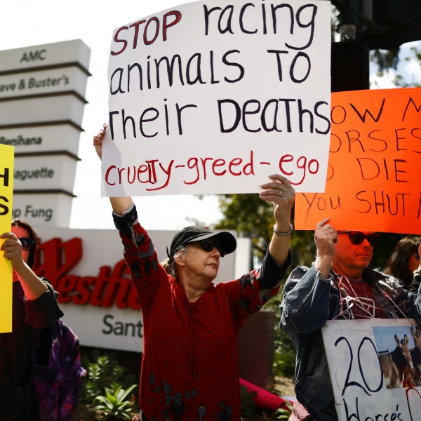 Animal rights activists protest horse racing deaths outside Santa Anita Park on March 10, 2019 in Arcadia, California. (Credit: Mario Tama/Getty Images)