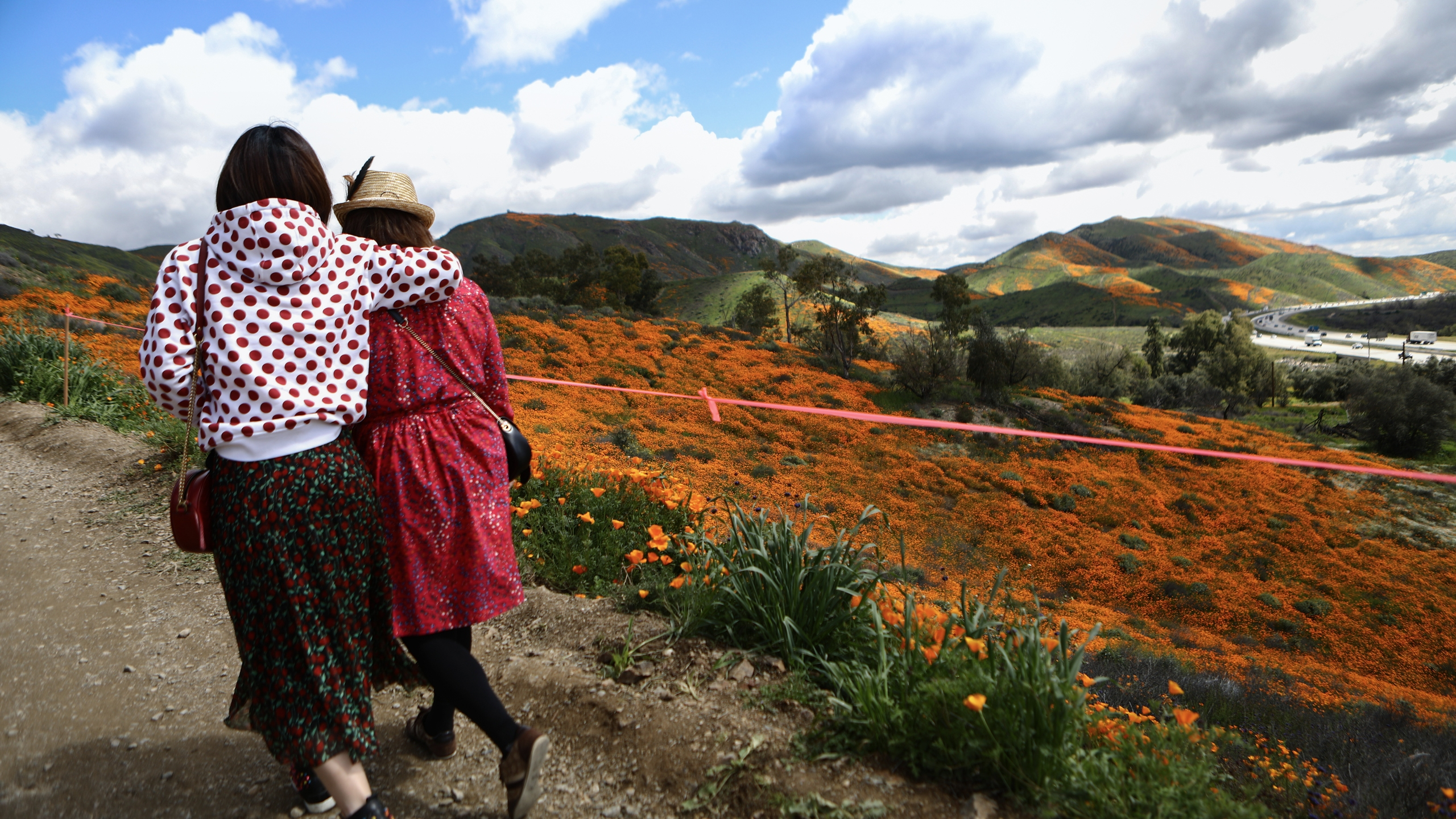 People visit a 'super bloom' of wild poppies blanketing the hills of Walker Canyon on March 12, 2019 near Lake Elsinore. (Credit: Mario Tama/Getty Images)