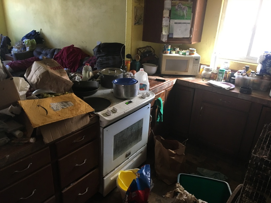A photo released by Ventura County sheriff's officials shows how the kitchen of an Ojai home that is the subject of an elder and animal abuse investigation appeared when authorities responded on March 14, 2019.