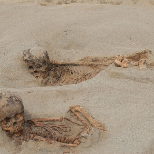 Children's remains are seen in an ancient mass sacrifice site in Peru. Researchers announced the discovery of the skeletons in April 2018. (Credit: John Verano/Tulane University via CNN)