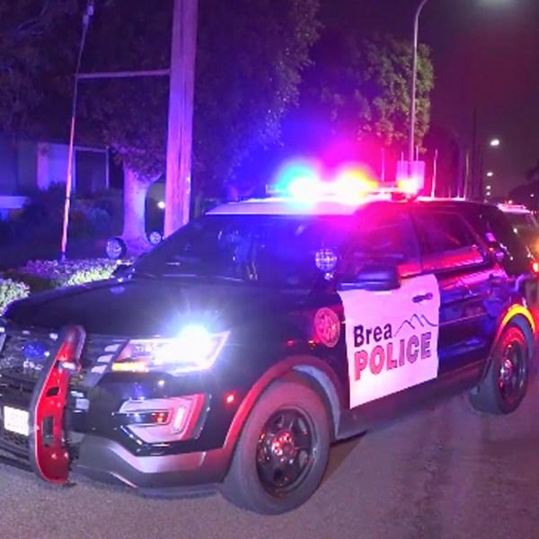 Police investigate a domestic disturbance in Brea on April 22, 2019. (Credit: OnScene.TV)