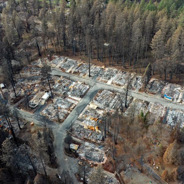 Homes in Paradise destroyed by the Camp Fire are seen in an aerial view on Feb. 11, 2019. (Credit: Justin Sullivan / Getty Images)