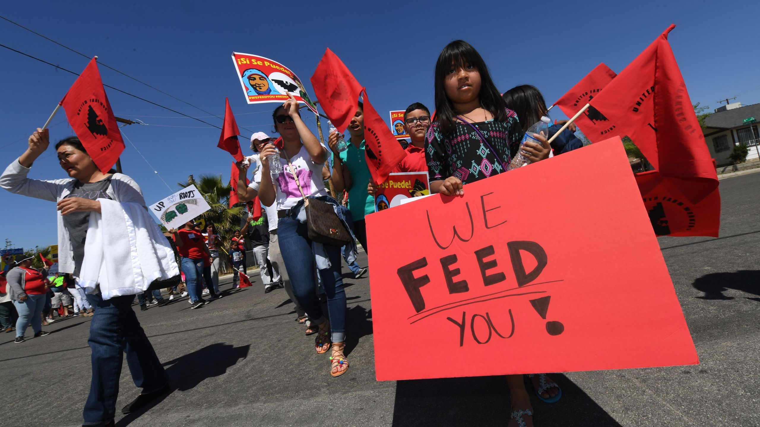 "Casey Rojas, 9, carries a ""We Feed You"" banner as she shows support for farm workers marching against Donald Trumps anti-immigrant policies in Delano on on April 2, 2017."
