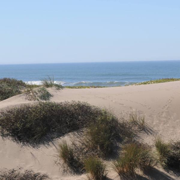 The Oceano Dunes State Vehicular Recreation Area appears in an image posted by the California State Parks, Off-Highway Motor Vehicle Recreation Division to Facebook on November 27, 2017.