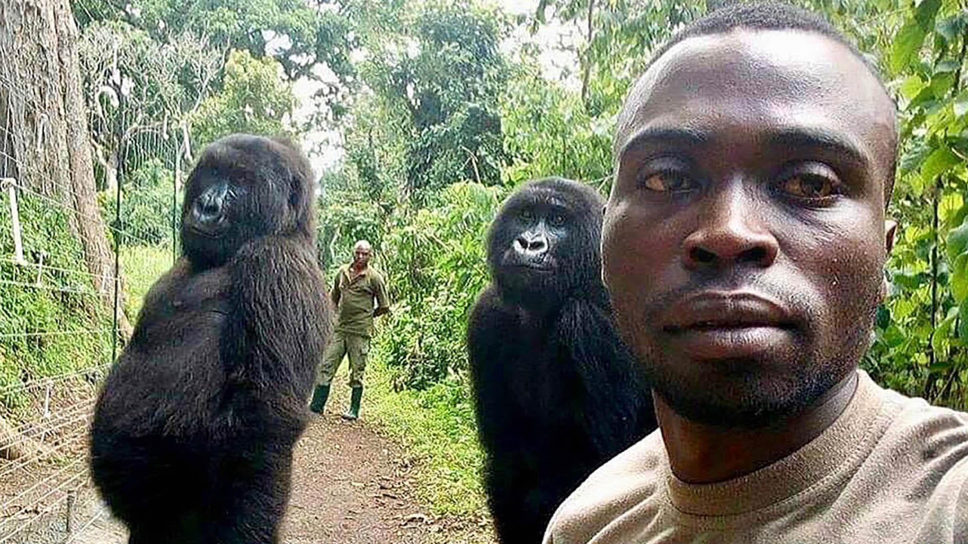 Ndakazi and Ndeze pose with a park ranger at Virunga National Park in the Democratic Republic of Congo. (Virunga National Park/Instagram)