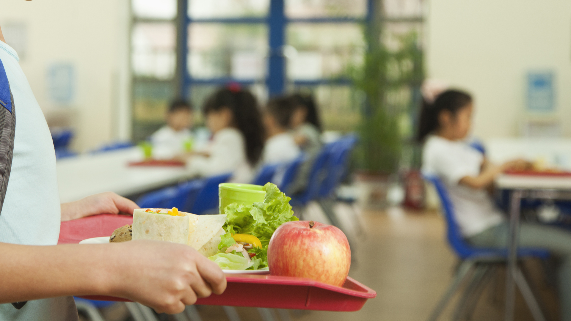 A student hold a lunch tray at a school cafeteria in this file photo. (Credit: iStock / Getty Images Plus)