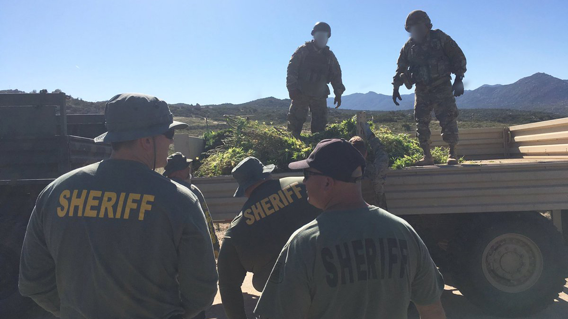 The Riverside County Sheriff's Department released this photo of the raid in Anza Valley on June 6, 2019.