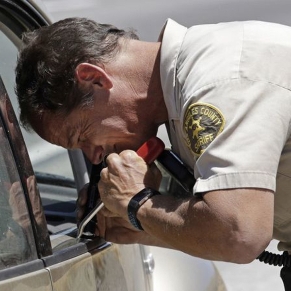 A deputy on the L.A. County sheriff's Domestic Highway Enforcement team inspects a car on the 5 Freeway last year. (Credit: Myung J. Chun / Los Angeles Times)