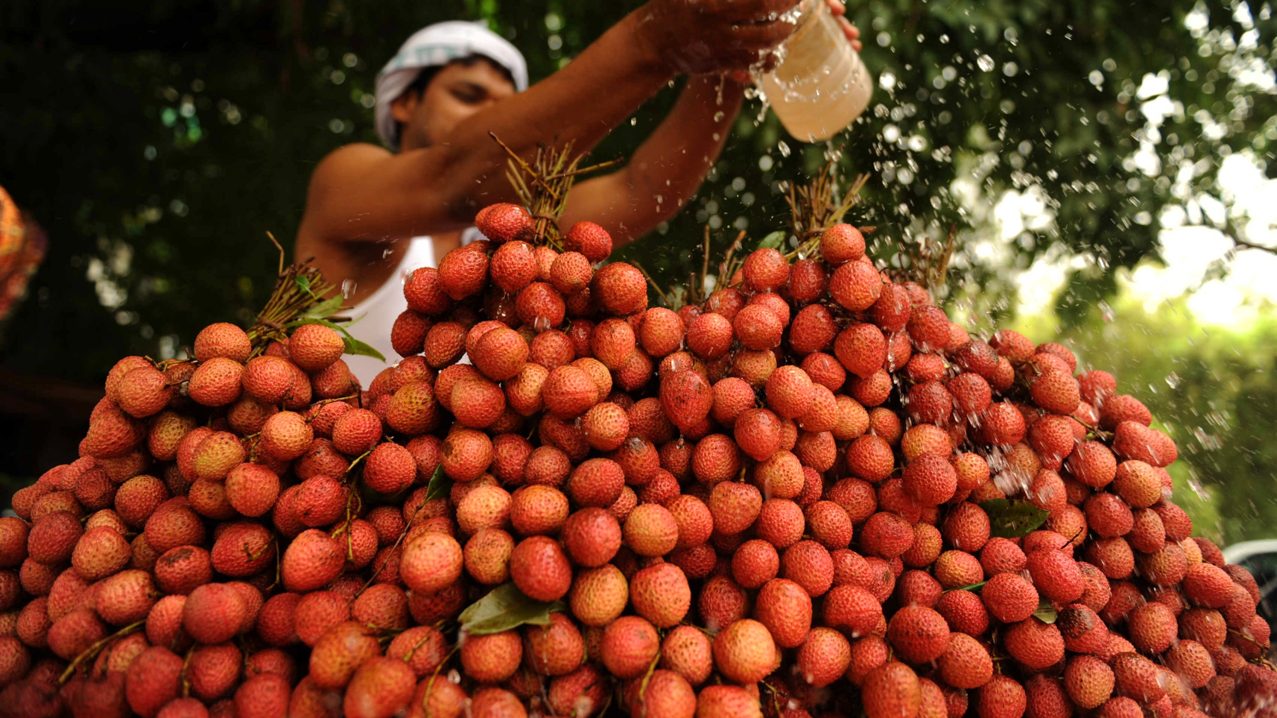 A fruit vendor pours water over lychees at a roadside cart in Allahabad, India, on May 29, 2010. (Credit: DIPTENDU DUTTA/AFP/Getty Images)