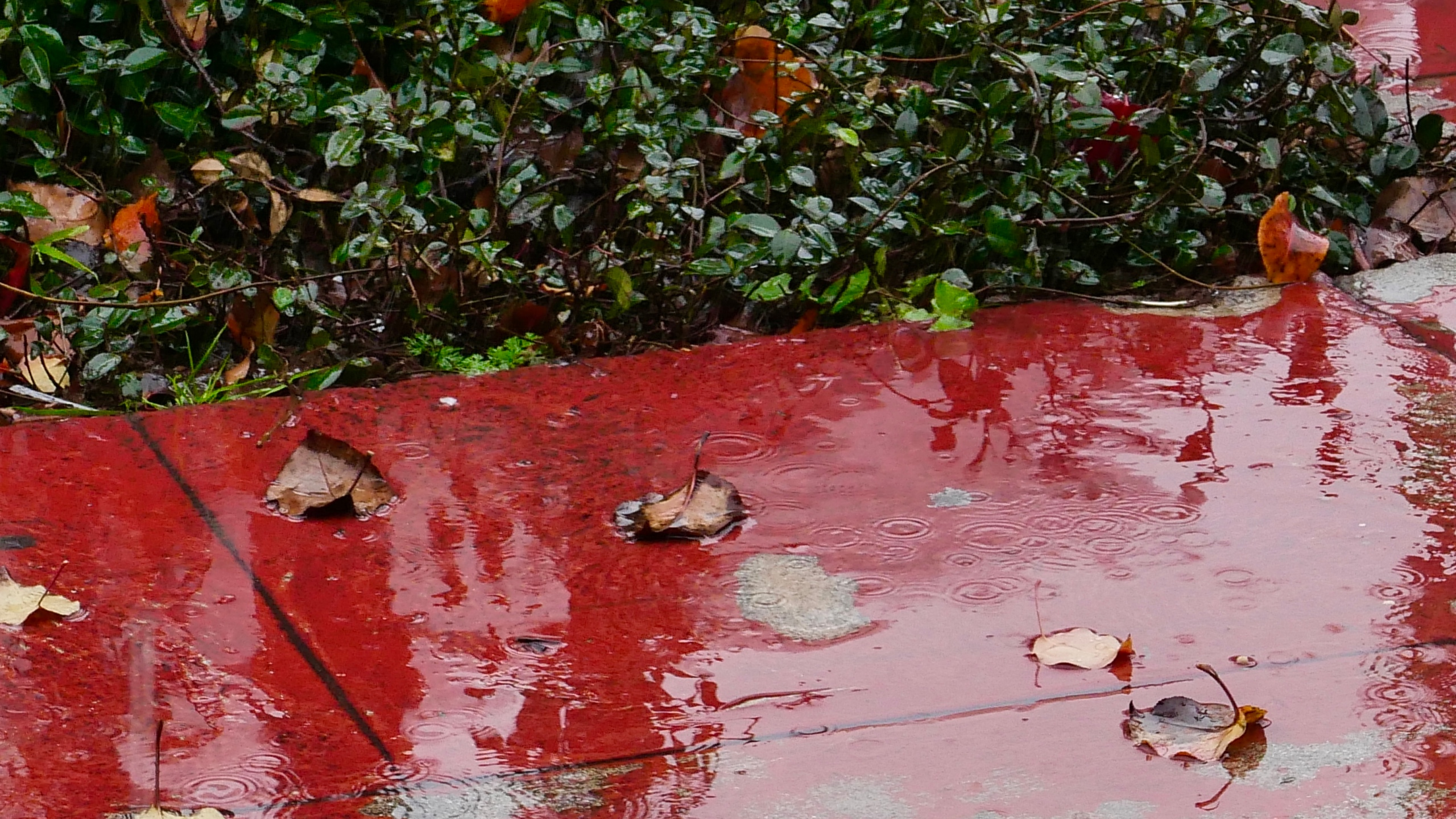 A wet sidewalk is seen in a file photo. (Credit: Getty Images)