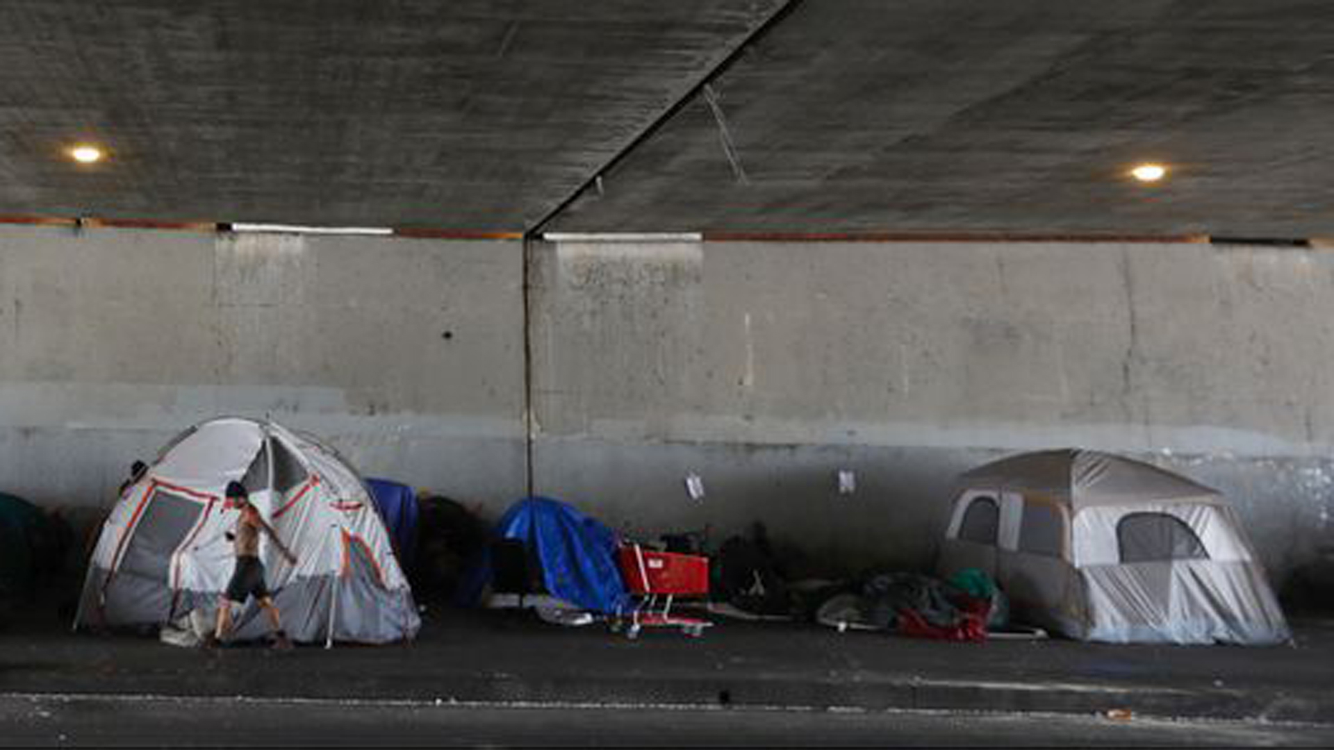 Tents line the north side of Venice Boulevard under the 405 Freeway overpass in Los Angeles in this undated photo. (Credit: Francine Orr / Los Angeles Times)