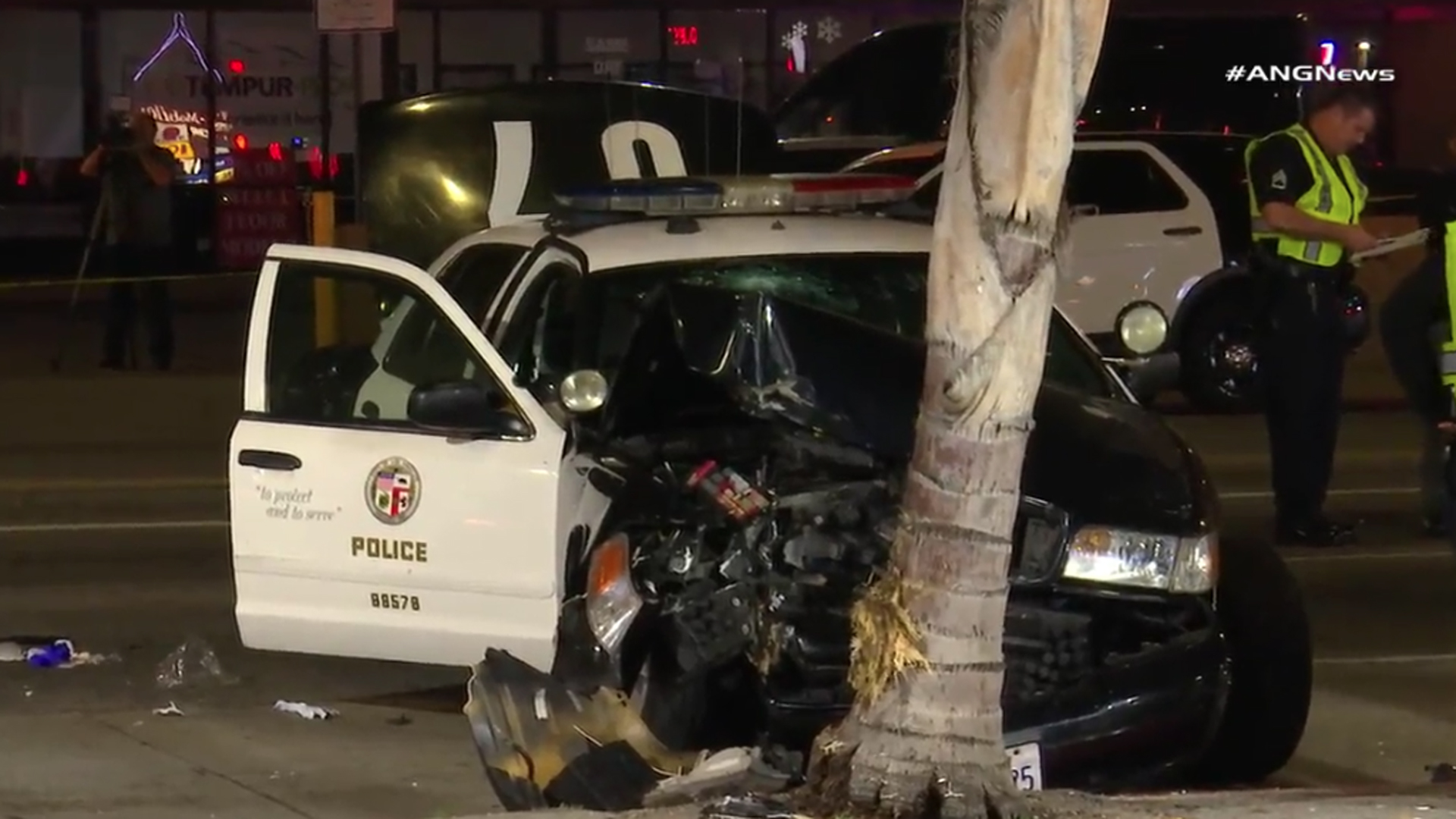 An LAPD vehicle involved in a chase crashed into a palm tree in Hancock Park on June 5, 2019. (Credit: ANG News)