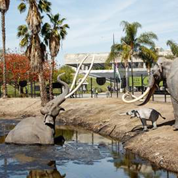 An image of the La Brea Tar Pits provided in a joint news release from the Natural History Museum of Los Angeles County and the La Brea Tar Pits & Museum.