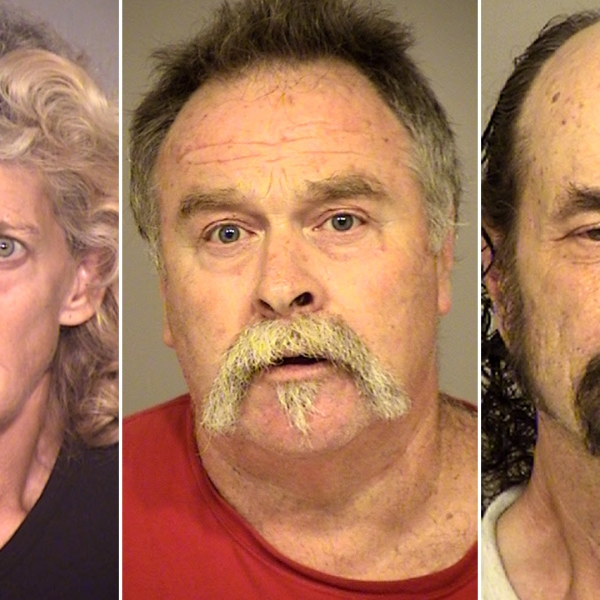 Dawn Allen, Travis Collett and Jesurun Cyrus appear in booking photos released by the Ventura County Sheriff's Office on June 19, 2019.