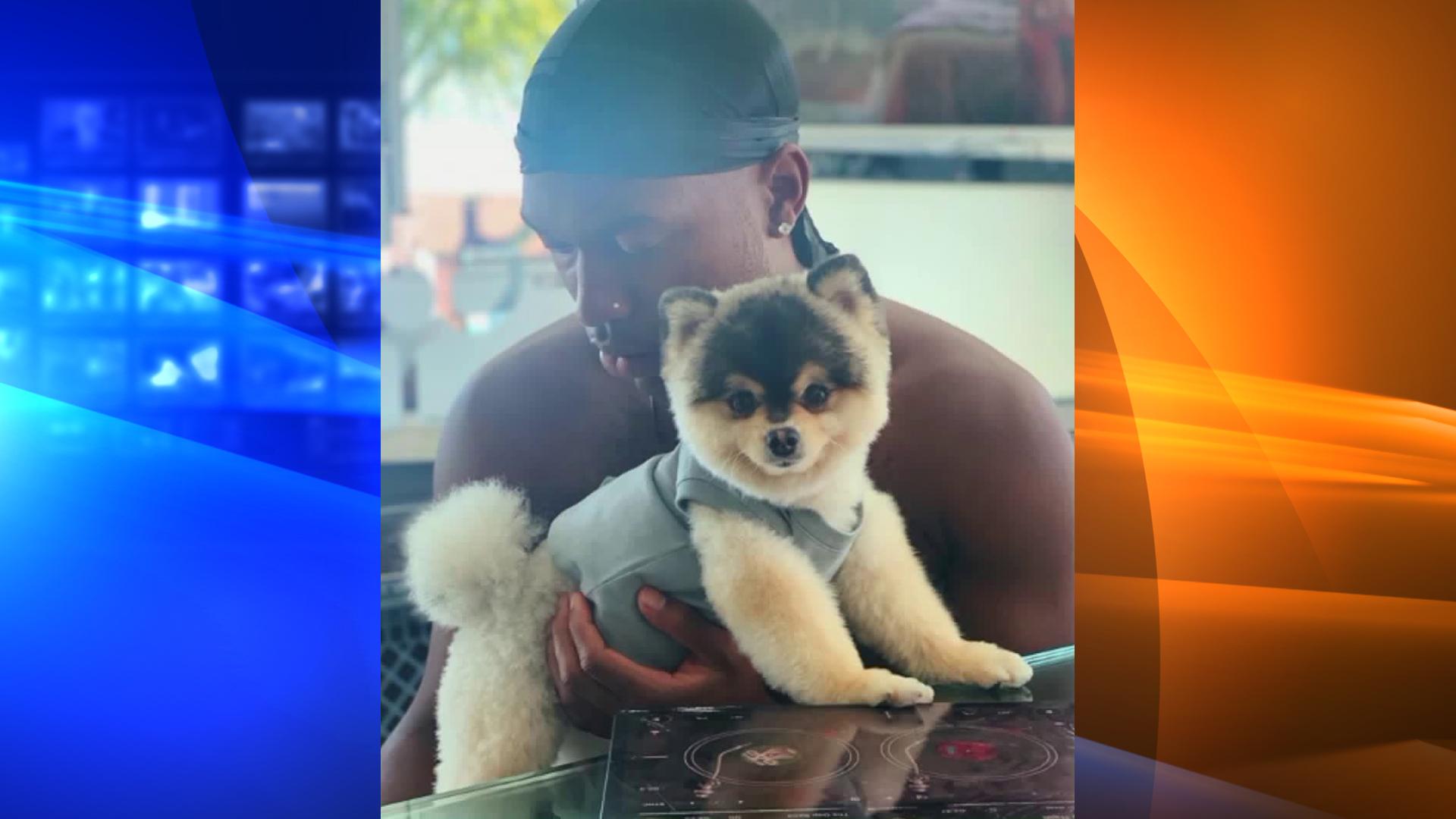 A photo of Daniel Sturridge and his dog Lucci.