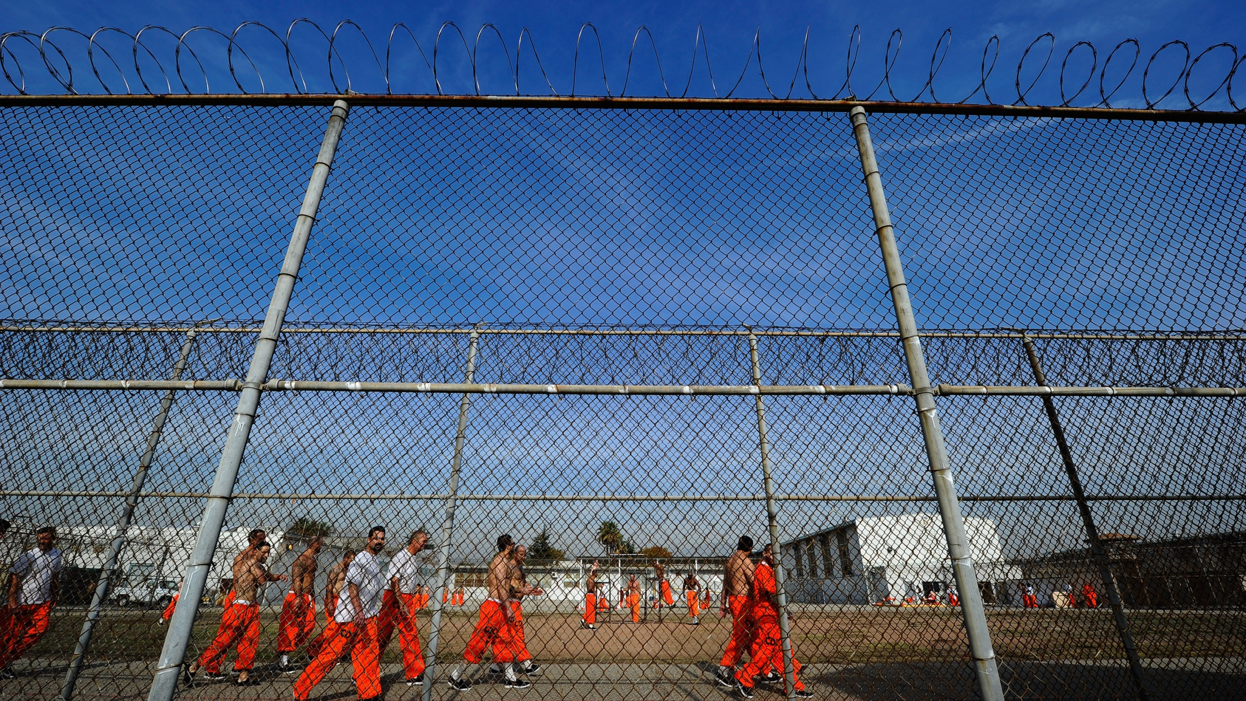 Inmates at the California Institution for Men in Chino exercise in the yard Dec. 10, 2010, in Chino, Calif. (Credit: Kevork Djansezian/Getty Images)