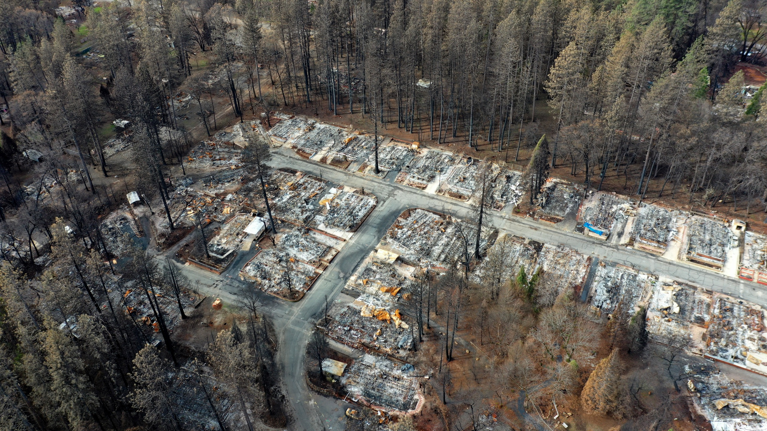 An aerial view of homes destroyed by the Camp Fire on February 11, 2019 in Paradise, California. (Credit: Justin Sullivan/Getty Images)
