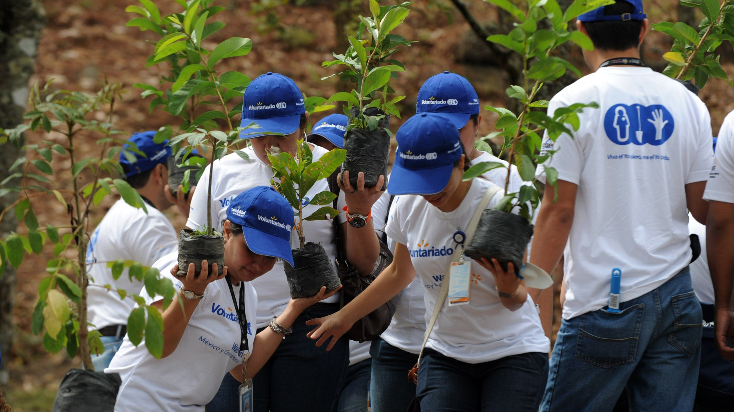 Volunteers participate in the reforestation of the 'Rosy Walter' zoo, on El Picacho hill, north of Tegucigalpa, Honduras, on April 18, 2012. (Credit: ORLANDO SIERRA/AFP/Getty Images)