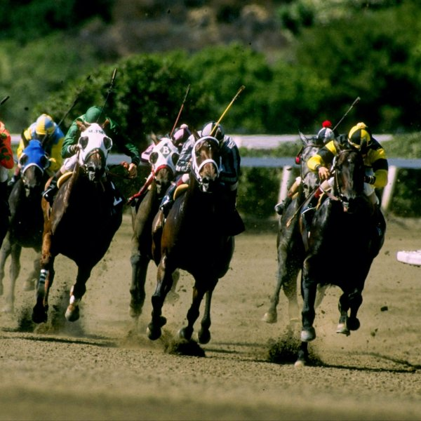 This file photo shows a horse race at Del Mar Racetrack. (Credit: Tim DeFrisco / Getty Images)