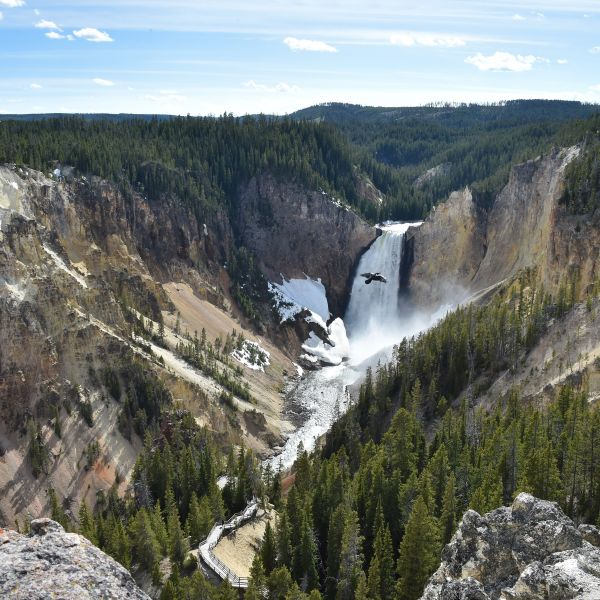 A view of the Lower Falls at the Grand Canyon of the Yellowstone National Park on May 11, 2016. (Credit: MLADEN ANTONOV/AFP/Getty Images)
