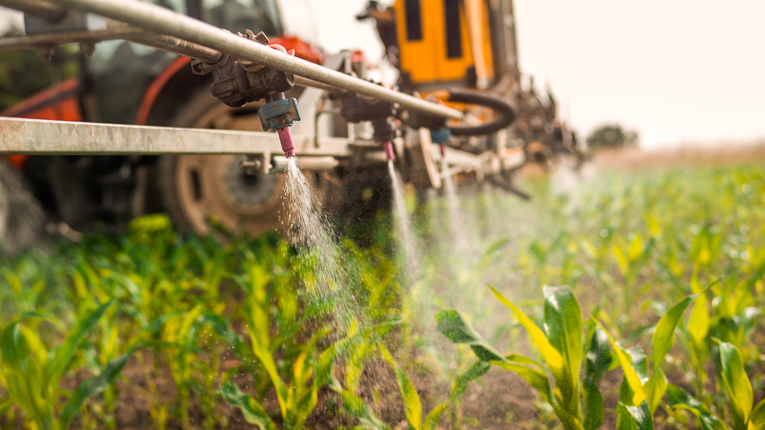 Crop sprayer spraying pesticides on crops in field. (Credit: simonkr / Getty Images)