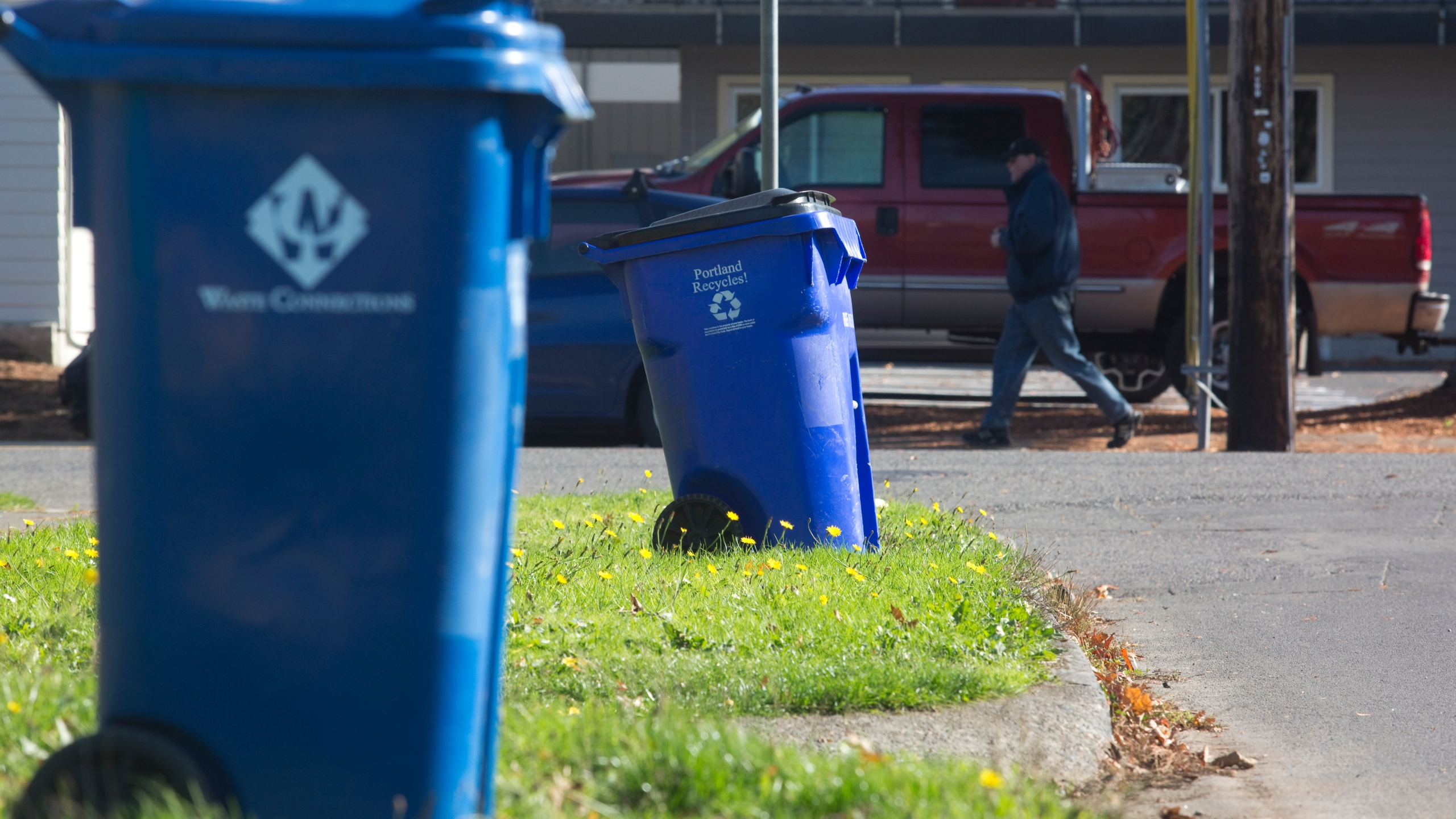 Blue recycling bins are seen in a neighborhood on Oct. 30, 2017, in Portland, Oregon. (Credit: Natalie Behring/Getty Images)
