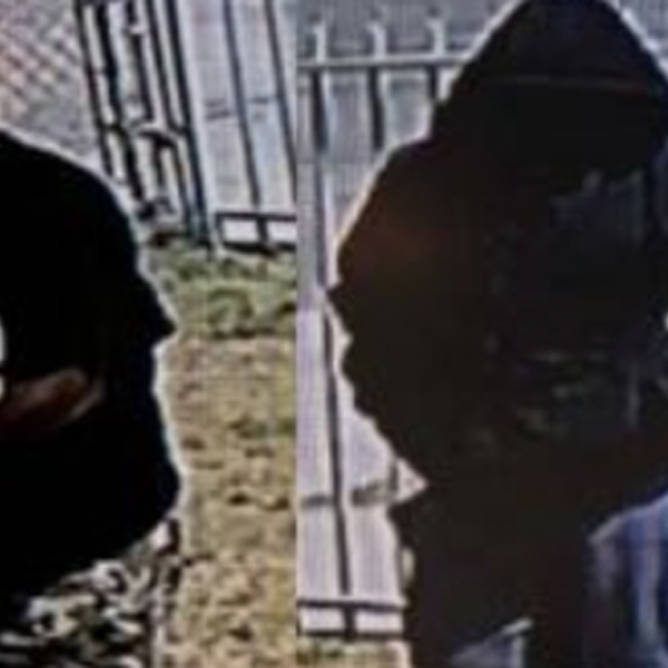 Two home invasion suspects are seen in an image provided by the Los Angeles County Sheriff's Department.