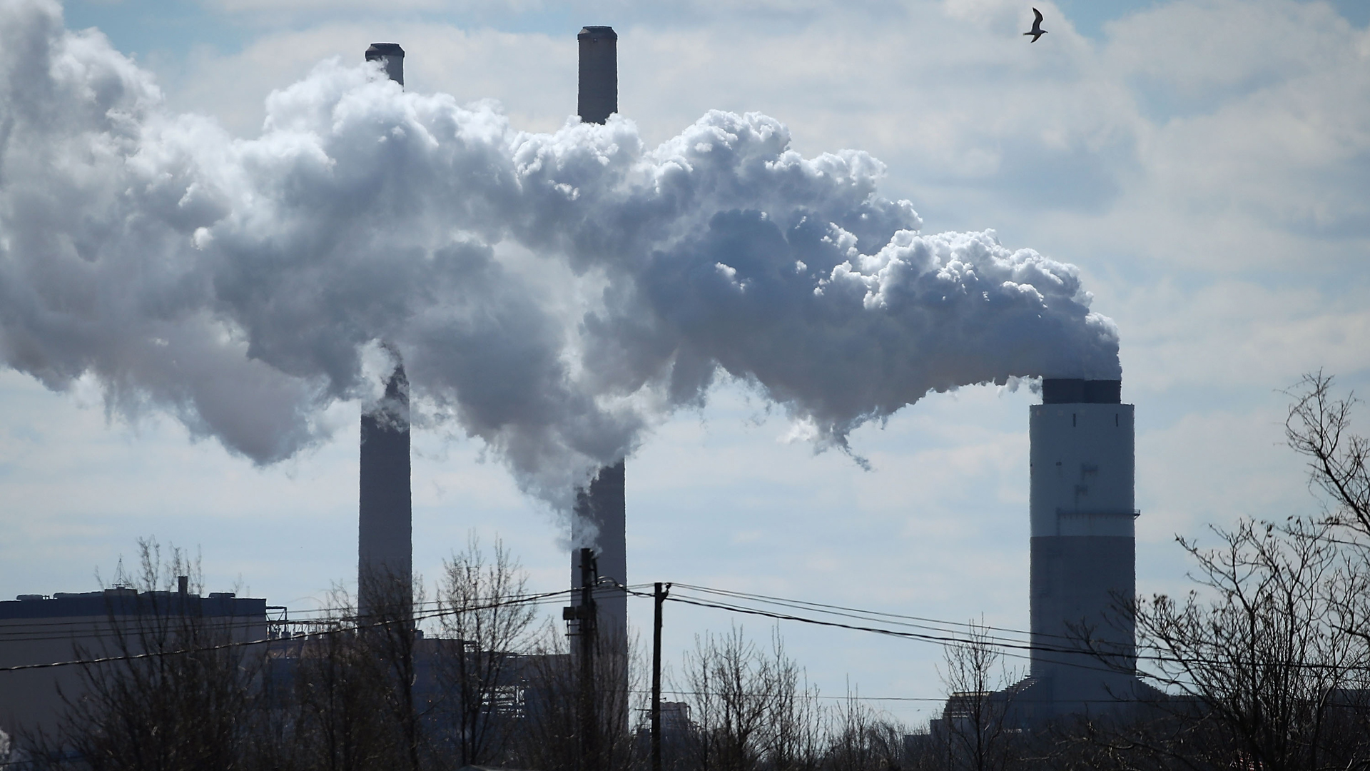 Emissions spew from a large stack at the coal fired Brandon Shores Power Plant, on March 9, 2018 in Baltimore, Maryland.(Credit: Mark Wilson/Getty Images)