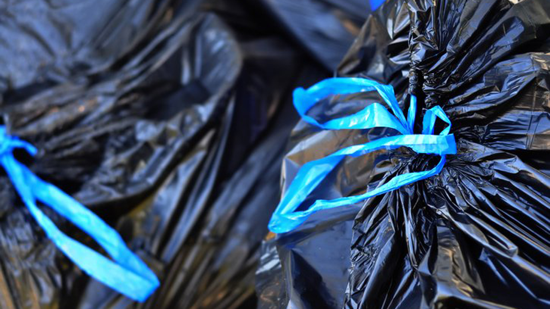 Black garbage bags are seen in file photo. (Credit: Getty Images)