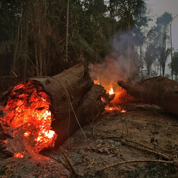 View of fire in the Amazon rainforest, near Abuna, Rondonia state, Brazil, on Aug. 24, 2019. (Credit: CARL DE SOUZA/AFP/Getty Images)