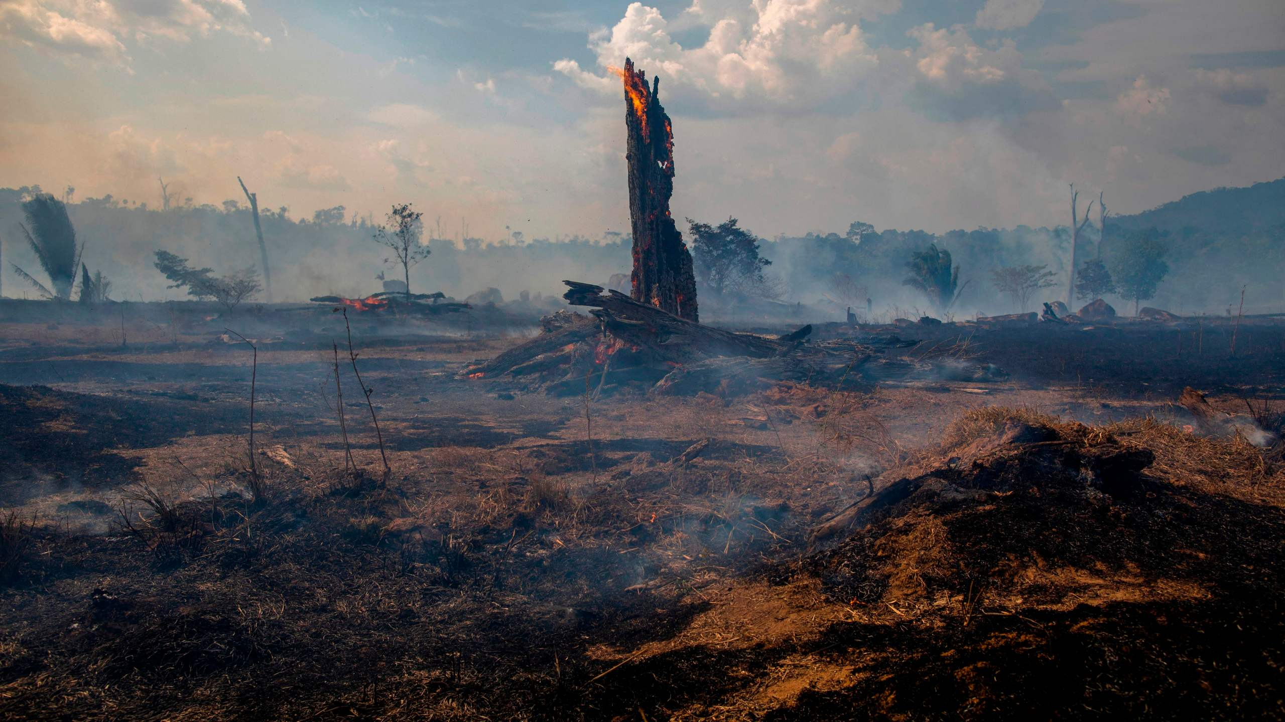 View of a burnt area of forest in Altamira, Para state, Brazil, oin the Amazon basin, on August 27, 2019. (Credit: JOAO LAET/AFP/Getty Images)