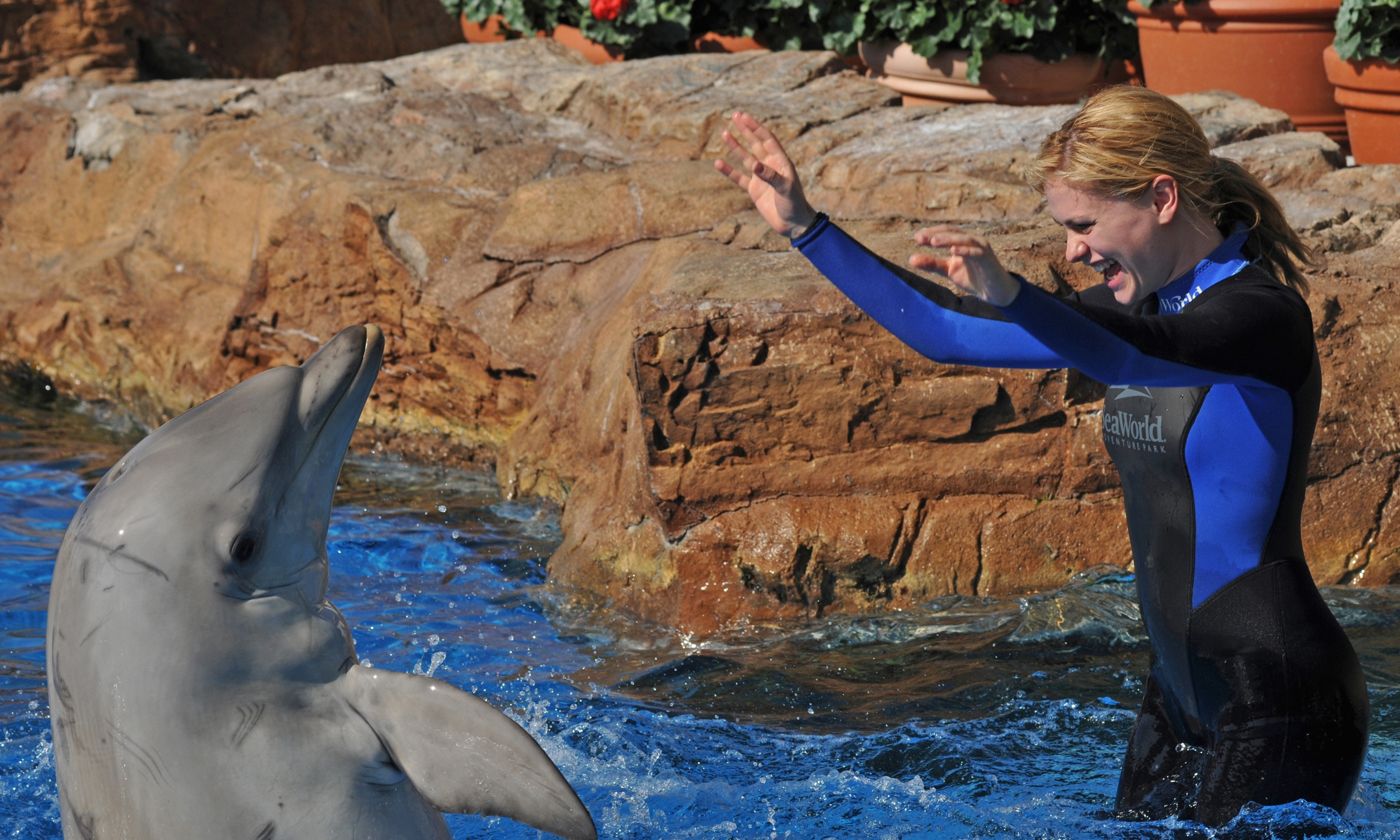"In this handout from SeaWorld San Diego, ""True Blood"" actor Anna Paquin swims with a bottlenose dolphin during a Dolphin Interaction Program at SeaWorld San Diego's Penguin Encounter July 26, 2009, in San Diego. (Credit: Bob Couey-SeaWorld via Getty Images)"