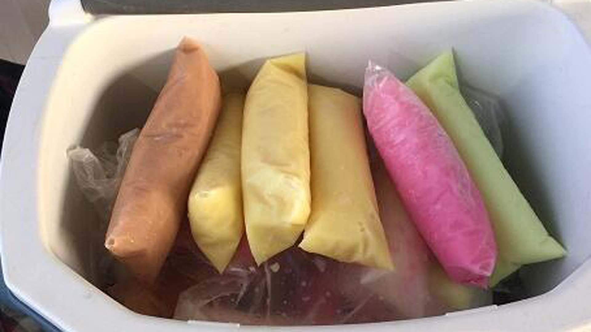 More than nine pounds of methamphetamine were found disguised as frozen Ice Pops, U.S. Customs and Border Protection agents said.
