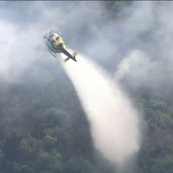 Firefighters battle a brush fire that burned in the Pacific Palisades area of Los Angeles on Aug. 13, 2019. (Credit: KTLA)