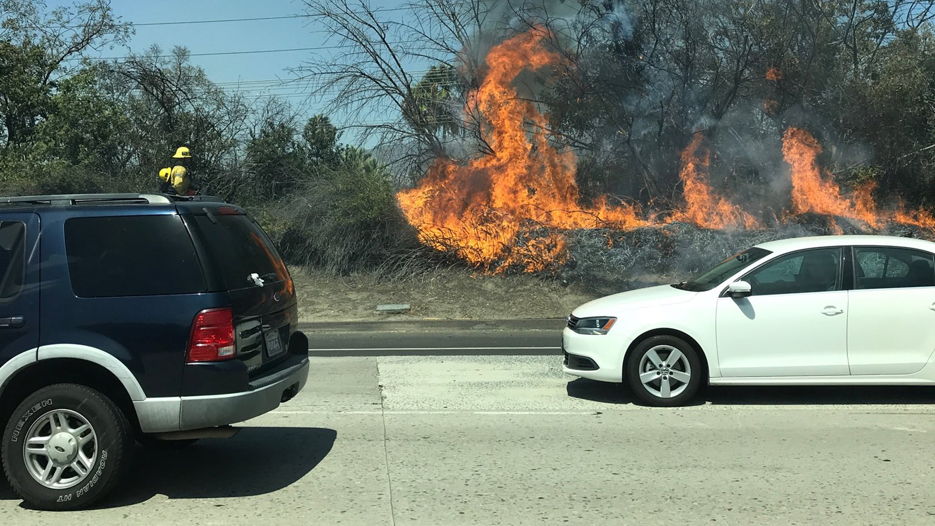 A brush fire burns along the 118 Freeway near the 5 in Mission Hills on Sept. 8, 2019. (Credit: Twitter.com/1standOmega)