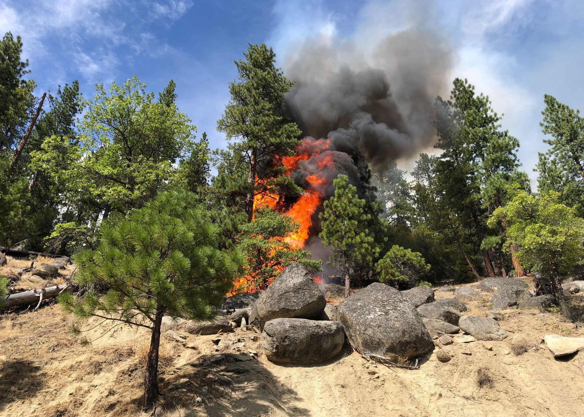 The Walker Fire is seen along its western perimeter near Wheeler Peak in Plumas National Forest in a photo released Sept. 9, 2019, by the U.S. Forest Service.