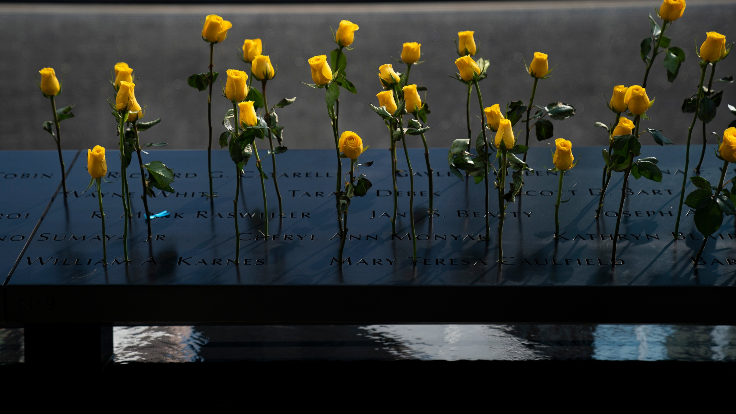 Flowers are left at the National September 11 Memorial on the 18th anniversary of the 9/11 attacks Sept. 11, 2019, in New York City. (Credit: Drew Angerer/Getty Images)