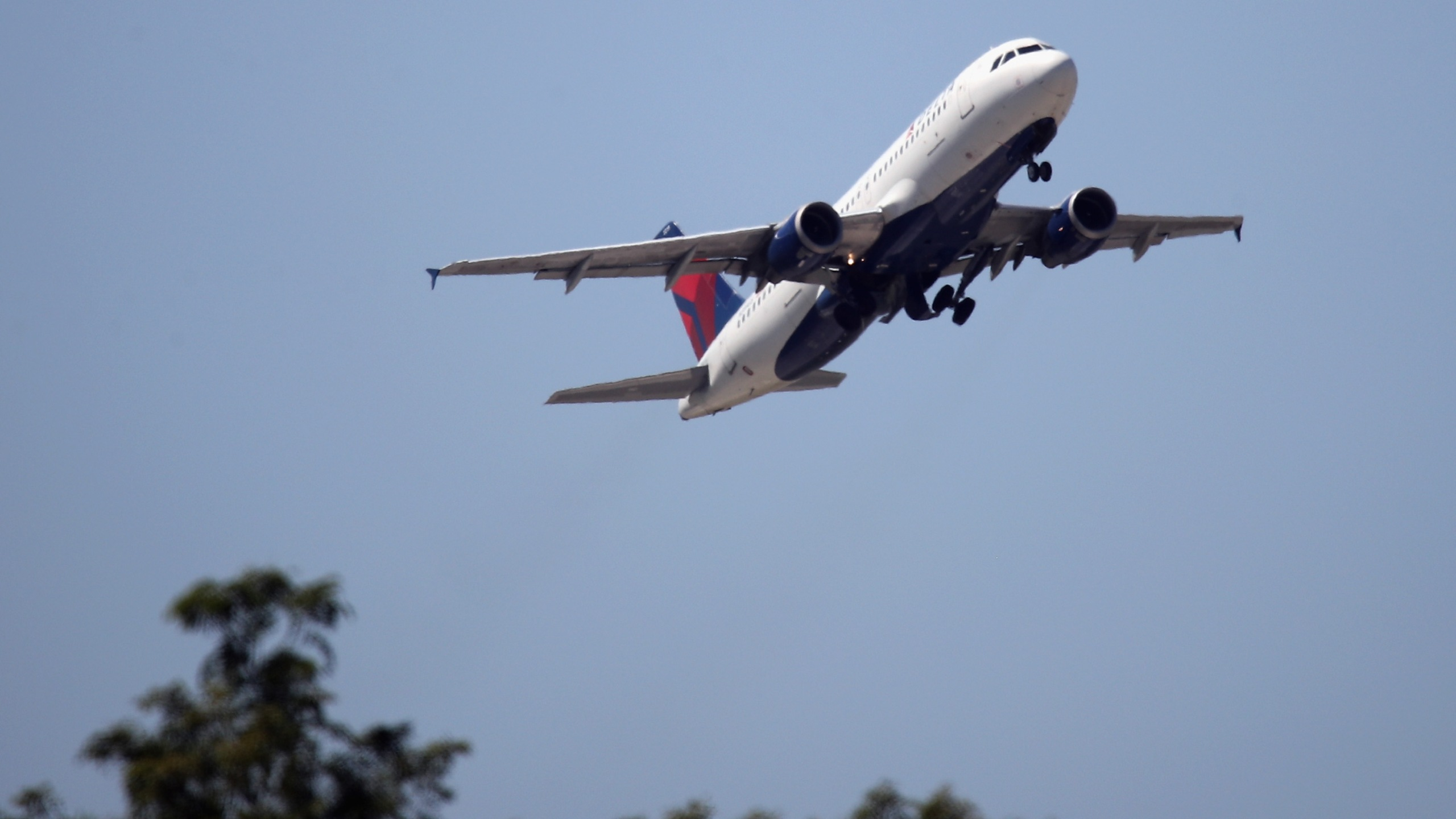 An Airbus A320-211 operated by Delta Airlines takes off from JFK Airport on August 24, 2019 in the Queens borough of New York City. ( Bruce Bennett/Getty Images)