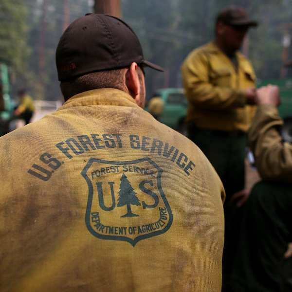 U.S. Forest Service firefighters take a break from battling the Rim Fire at Camp Mather on August 25, 2013 near Groveland, California. (Credit: Justin Sullivan/Getty Images)