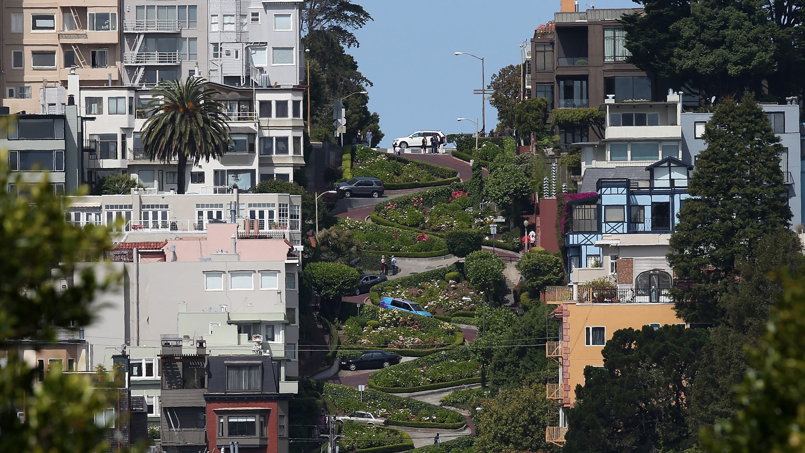 A view of Lombard Street on May 20, 2014 in San Francisco, California. (Credit: Justin Sullivan/Getty Images)