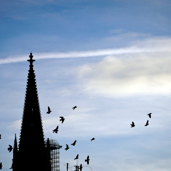 A view of the Cologne Cathedral on Jan. 9, 2016 in Germany. (Credit: Sascha Schuermann/Getty Images)