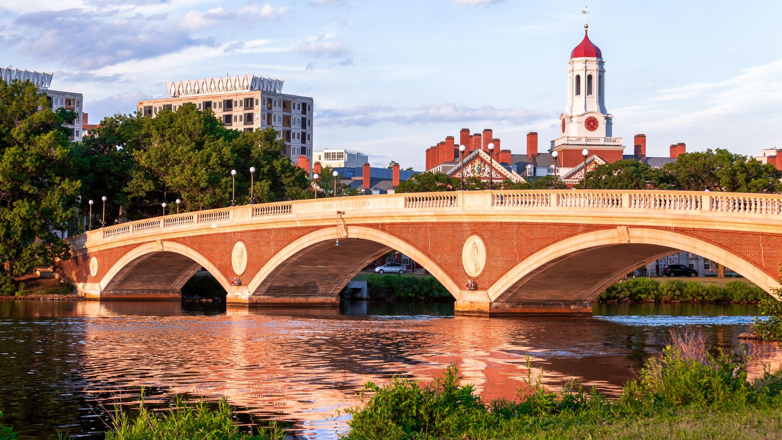 The Harvard University campus is seen in this undated photo. (Credit: Getty Images)