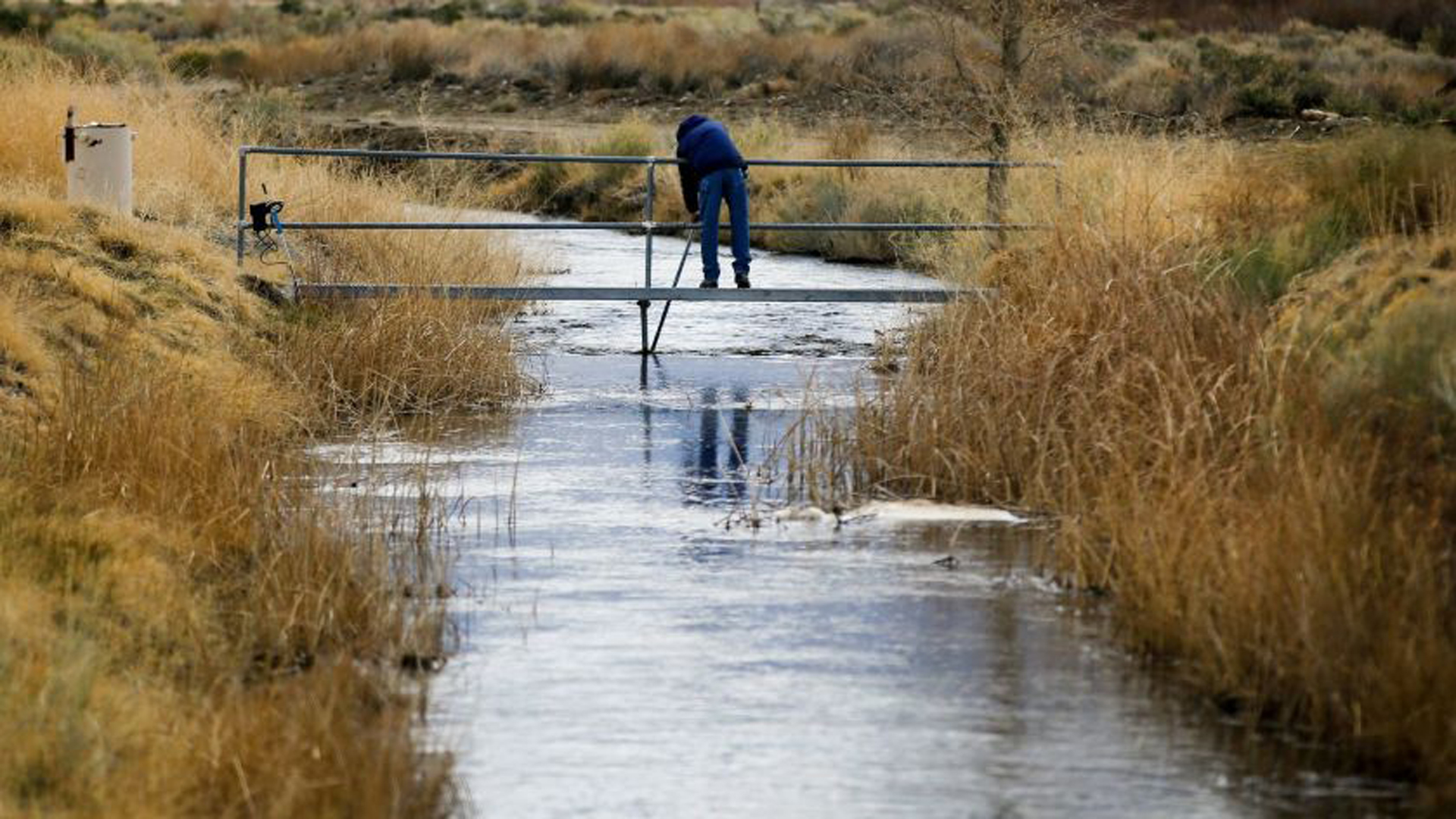 A government employee takes readings on a tributary of the Owens River near Bishop in 2017. (Credit: Mark Boster / Los Angeles Times)