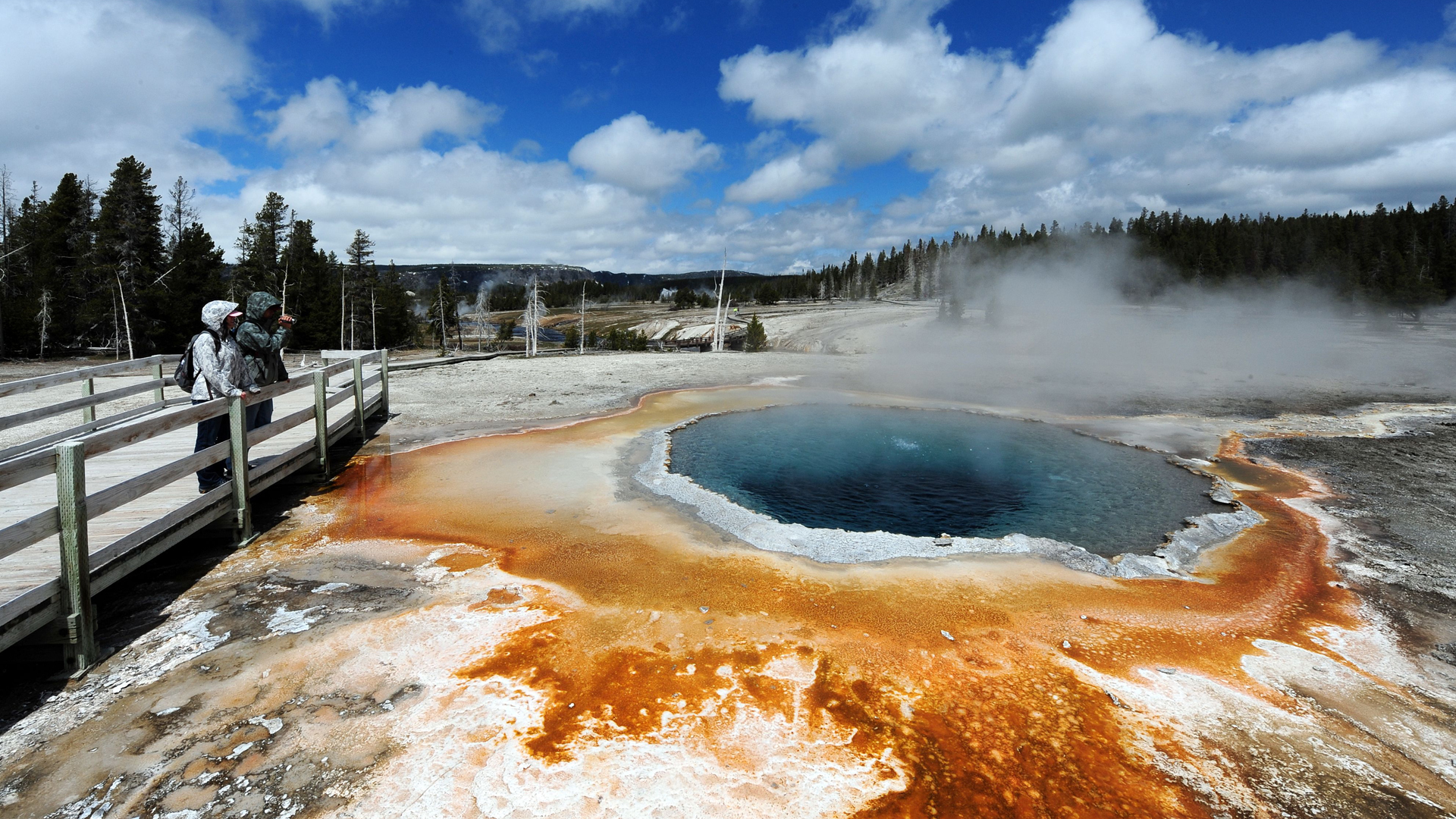 """A view of the """"Crested Pool"""" hot spring in Yellowstone National Park is seen in this photo from June 2, 2011. (Credit: MARK RALSTON/AFP/Getty Images)"""