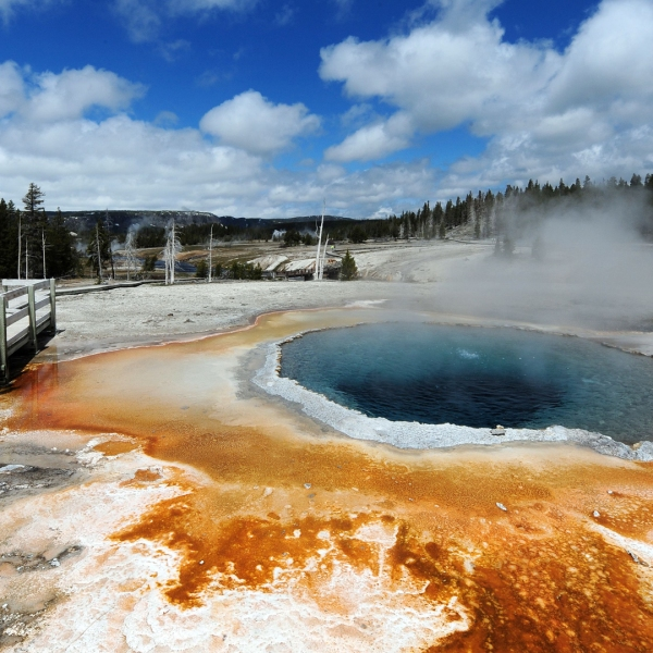 "A view of the ""Crested Pool"" hot spring in Yellowstone National Park is seen in this photo from June 2, 2011. (Credit: MARK RALSTON/AFP/Getty Images)"