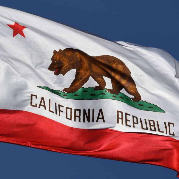 The California State flag flies outside City Hall in Los Angeles on Jan. 27, 2017. (Credit: MARK RALSTON/AFP/Getty Images)