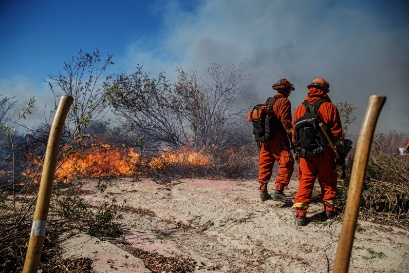 Inmate firefighters battle the Maria Fire on the Santa Clara River bed in Santa Paula on Nov. 1, 2019. (Credit: Marcus Yam / Los Angeles Times)